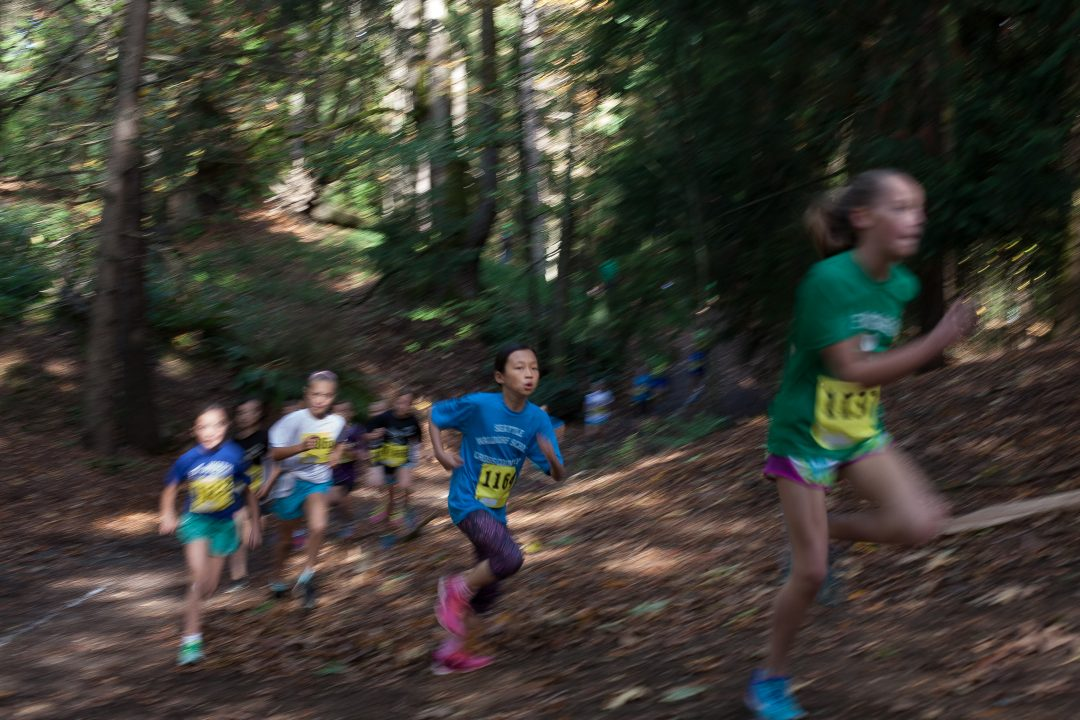 Students running a race in the woods