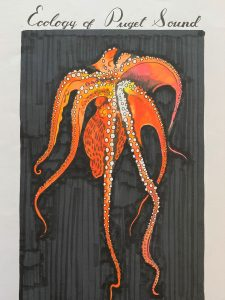 Student drawing of octopus