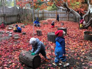 Preschool children playing in fall leaves.